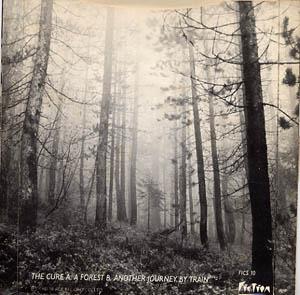 jacket_forest_7r.jpg